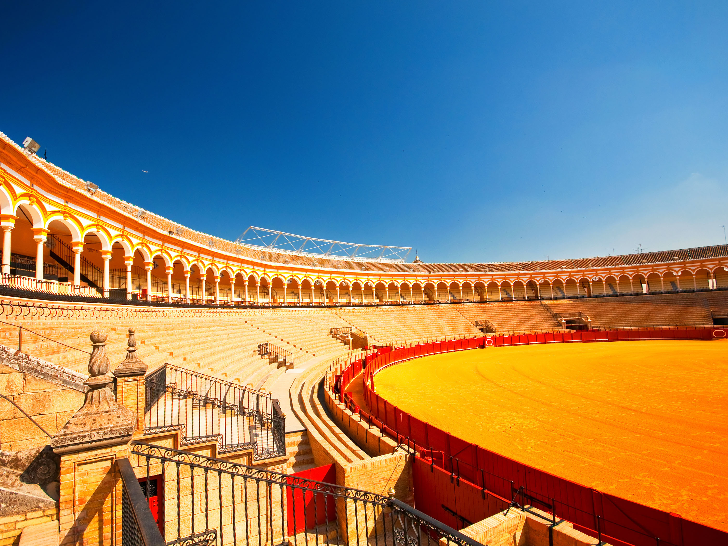 721_1430504368_seville-bull-ar